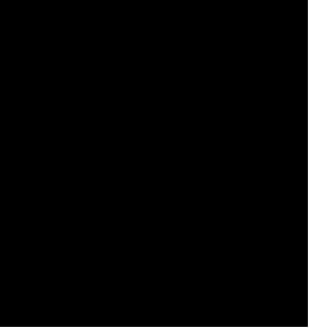 Logo-Bag-again